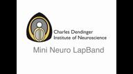 Mini Neuro LapBand