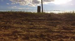 Drone footage of Salem Sue part 2