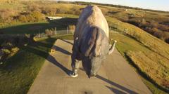 Drone vid 3 of Worlds Largest Buffalo